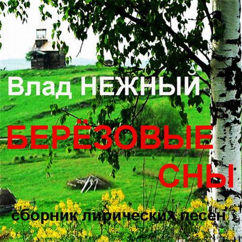 Нежный Владимир - Березовые сны. Сборник лирических песен 2014(320)