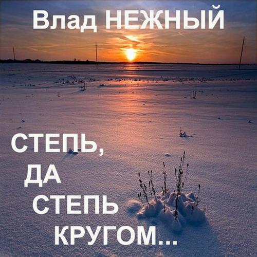 Нежный Владимир - Степь, да степь кругом 2013(320)