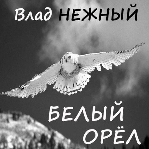 Нежный Владимир - Белый орёл 2017(320)