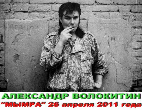 http://store.shanson-plus.ru/index.php/s/isO6AB9qlLiB7qp/download